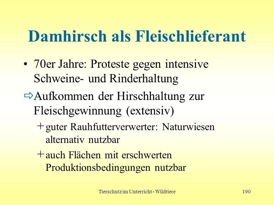 Tierschutz im Unterricht - Wildtiere190 Damhirsch als Fleischlieferant 70er Jahre: Proteste gegen intensive Schweine- und Rinderhaltung Aufkommen der