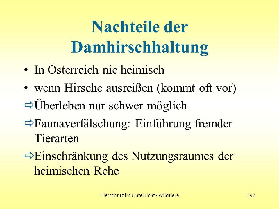 Tierschutz im Unterricht - Wildtiere192 Nachteile der Damhirschhaltung In Österreich nie heimisch wenn Hirsche ausreißen (kommt oft vor) Überleben nur