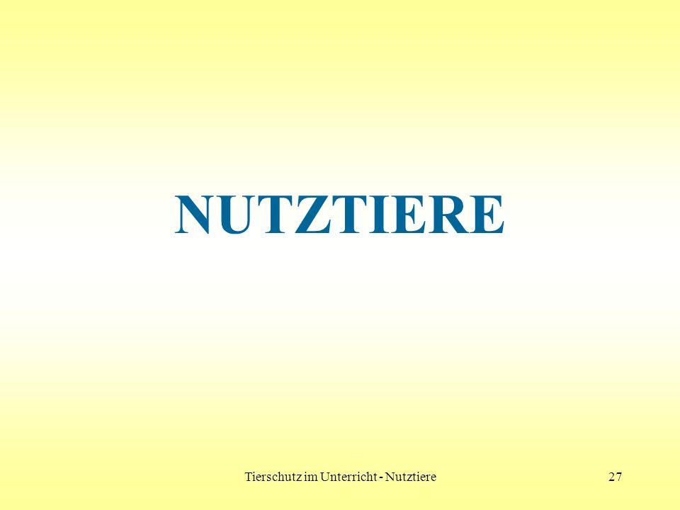 Tierschutz im Unterricht - Nutztiere27 NUTZTIERE