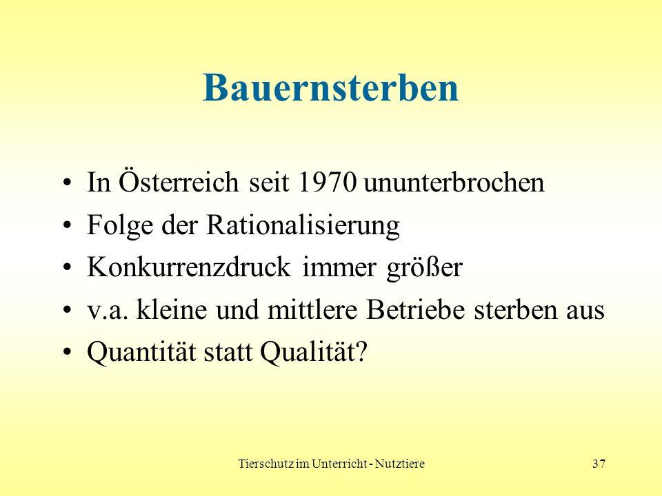 Tierschutz im Unterricht - Nutztiere37 Bauernsterben In Österreich seit 1970 ununterbrochen Folge der Rationalisierung Konkurrenzdruck immer größer v.