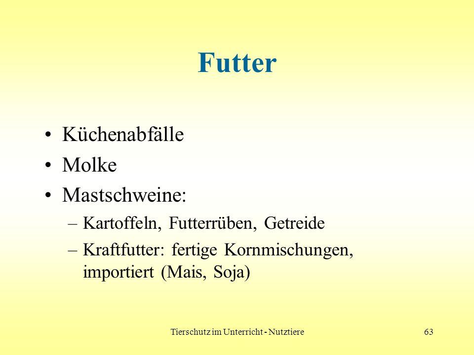 Tierschutz im Unterricht - Nutztiere63 Futter Küchenabfälle Molke Mastschweine: –Kartoffeln, Futterrüben, Getreide –Kraftfutter: fertige Kornmischunge