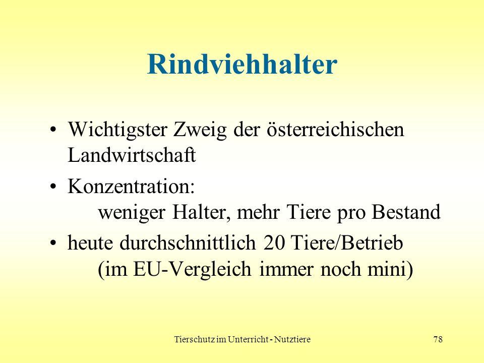 Tierschutz im Unterricht - Nutztiere78 Rindviehhalter Wichtigster Zweig der österreichischen Landwirtschaft Konzentration: weniger Halter, mehr Tiere