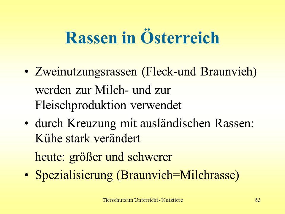 Tierschutz im Unterricht - Nutztiere83 Rassen in Österreich Zweinutzungsrassen (Fleck-und Braunvieh) werden zur Milch- und zur Fleischproduktion verwe