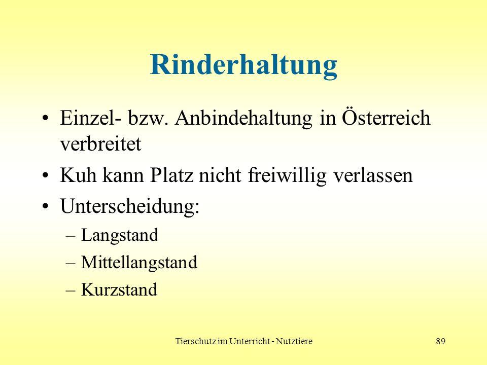 Tierschutz im Unterricht - Nutztiere89 Rinderhaltung Einzel- bzw. Anbindehaltung in Österreich verbreitet Kuh kann Platz nicht freiwillig verlassen Un
