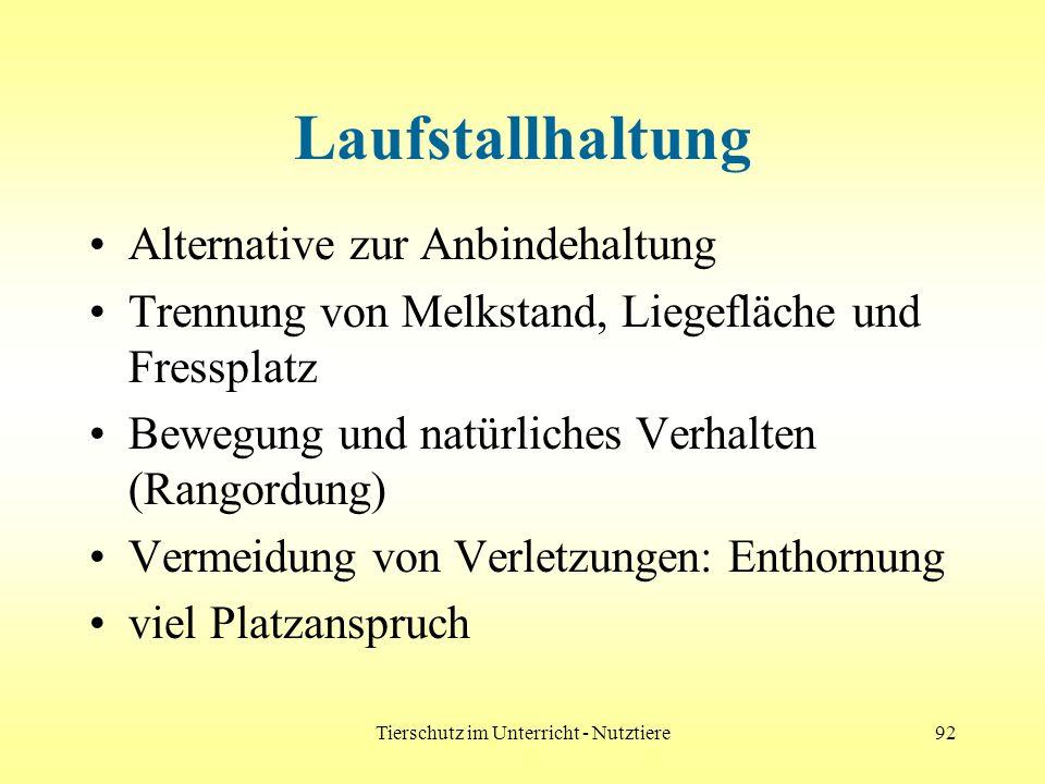 Tierschutz im Unterricht - Nutztiere92 Laufstallhaltung Alternative zur Anbindehaltung Trennung von Melkstand, Liegefläche und Fressplatz Bewegung und