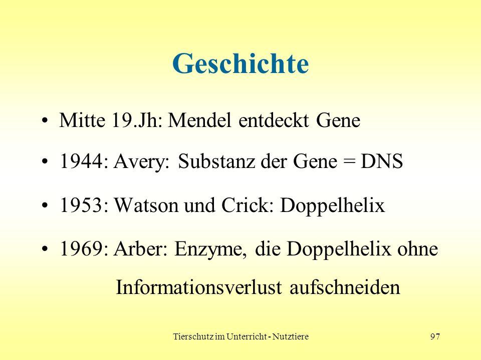 Tierschutz im Unterricht - Nutztiere97 Geschichte Mitte 19.Jh: Mendel entdeckt Gene 1944: Avery: Substanz der Gene = DNS 1953: Watson und Crick: Doppe
