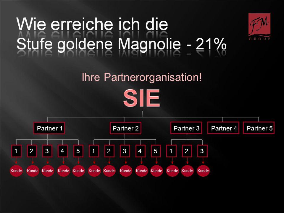 1234512345123 Partner 1 Partner 2 Partner 3 Partner 4 Partner 5 Ihre Partnerorganisation!
