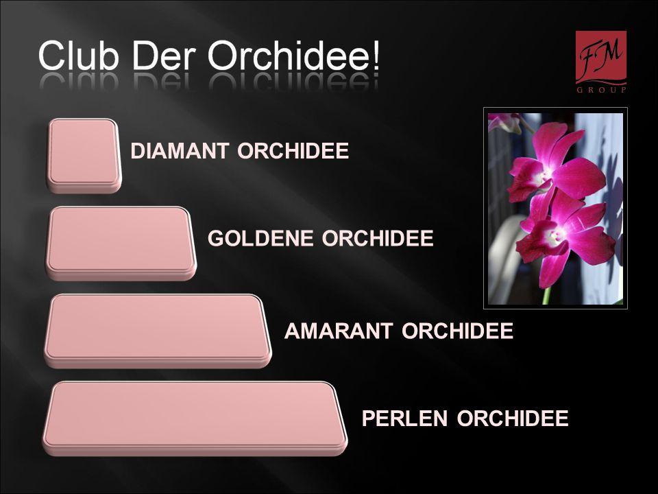DIAMANT ORCHIDEE PERLEN ORCHIDEE GOLDENE ORCHIDEE AMARANT ORCHIDEE