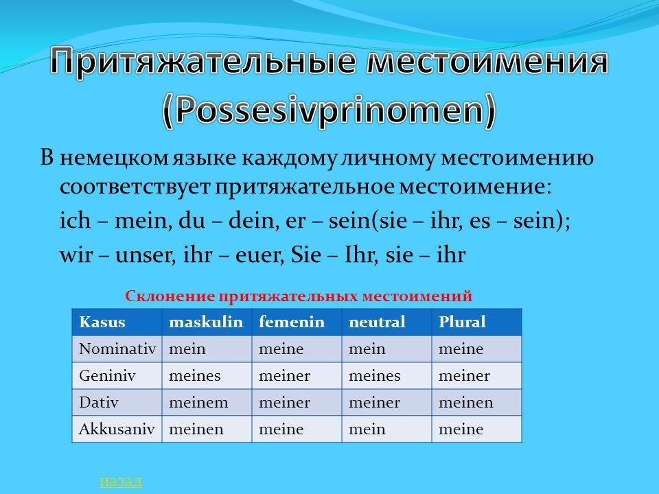 В немецком языке каждому личному местоимению соответствует притяжательное местоимение: ich – mein, du – dein, er – sein(sie – ihr, es – sein); wir – u