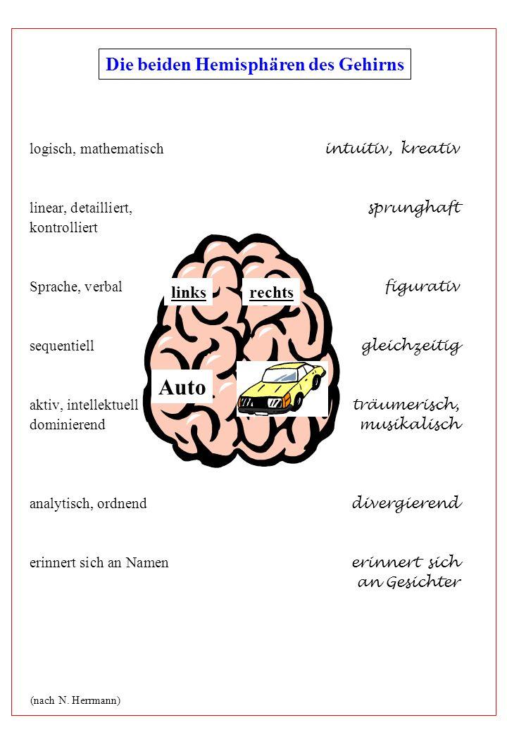 logisch, mathematisch intuitiv, kreativ linear, detailliert, sprunghaft kontrolliert Sprache, verbal figurativ sequentiell gleichzeitig aktiv, intelle