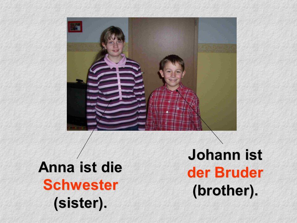 Anna ist die Schwester (sister). Johann ist der Bruder (brother).
