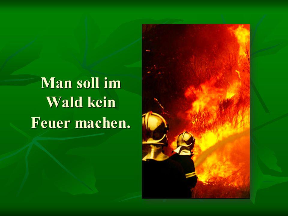 Man soll im Wald kein Feuer machen.