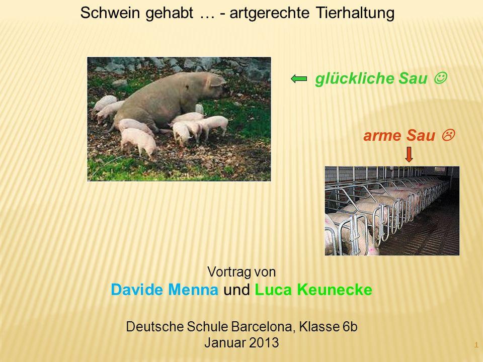 1 Vortrag von Davide Menna und Luca Keunecke Deutsche Schule Barcelona, Klasse 6b Januar 2013 glückliche Sau arme Sau Schwein gehabt … - artgerechte T