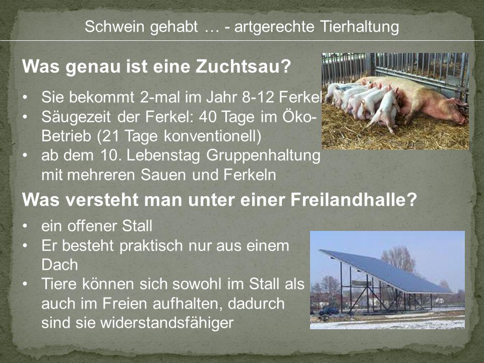 Schwein gehabt … - artgerechte Tierhaltung Was genau ist eine Zuchtsau? Was versteht man unter einer Freilandhalle? Sie bekommt 2-mal im Jahr 8-12 Fer