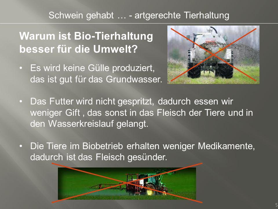 Schwein gehabt … - artgerechte Tierhaltung 5 Warum ist Bio-Tierhaltung besser für die Umwelt? Es wird keine Gülle produziert, das ist gut für das Grun