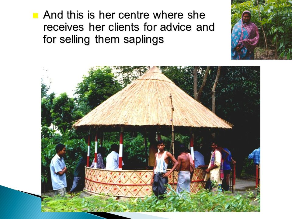And this is her centre where she receives her clients for advice and for selling them saplings And this is her centre where she receives her clients for advice and for selling them saplings