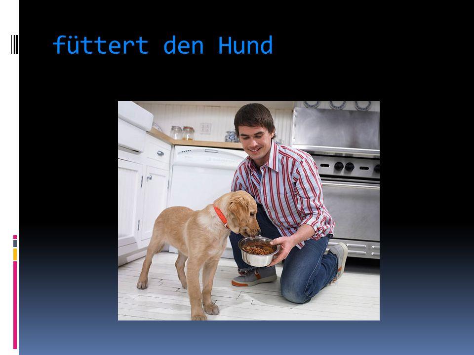 füttert den Hund