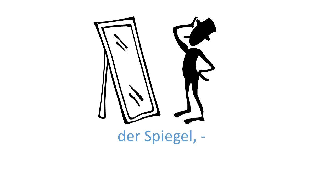 der Spiegel, -