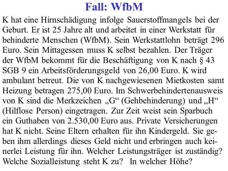 Fall: WfbM K hat eine Hirnschädigung infolge Sauerstoffmangels bei der Geburt. Er ist 25 Jahre alt und arbeitet in einer Werkstatt für behinderte Mens