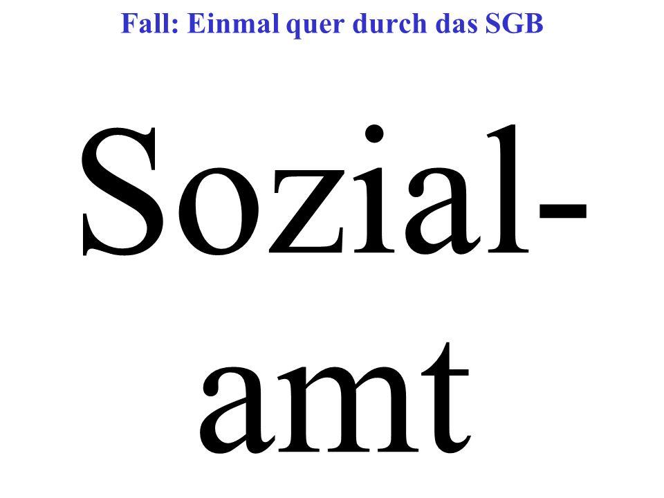 Sozial- amt Fall: Einmal quer durch das SGB