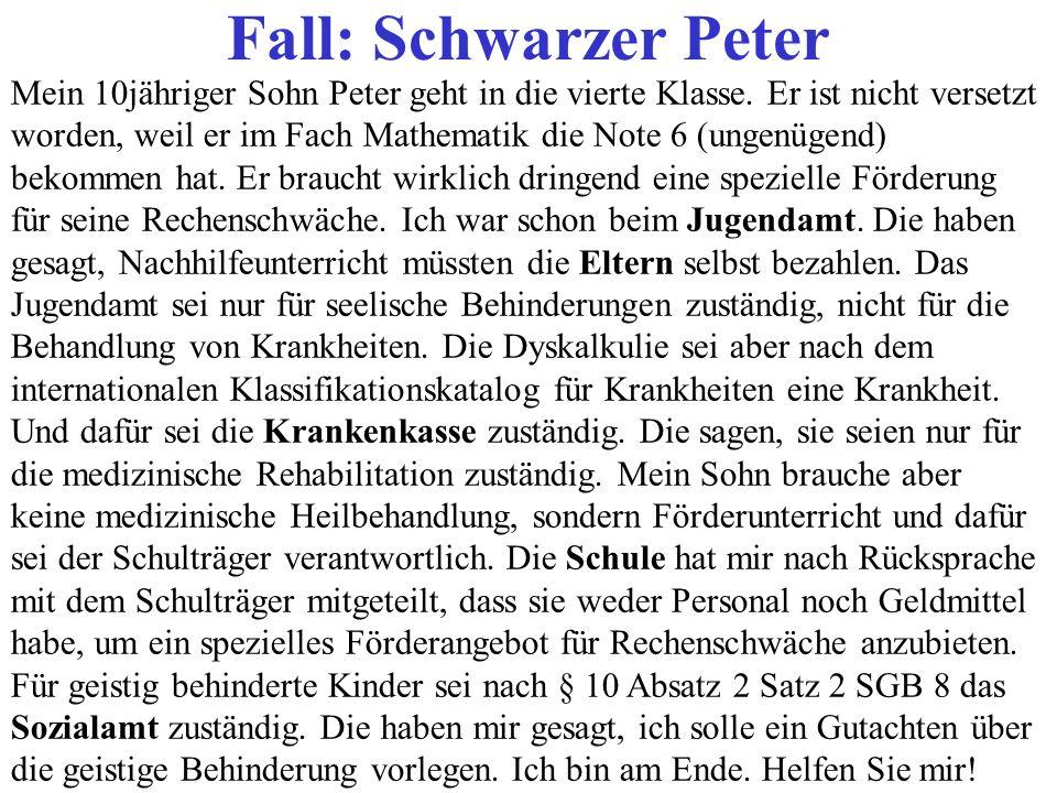 Mein 10jähriger Sohn Peter geht in die vierte Klasse. Er ist nicht versetzt worden, weil er im Fach Mathematik die Note 6 (ungenügend) bekommen hat. E