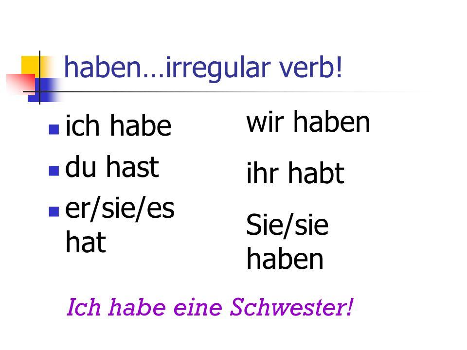 haben…irregular verb.