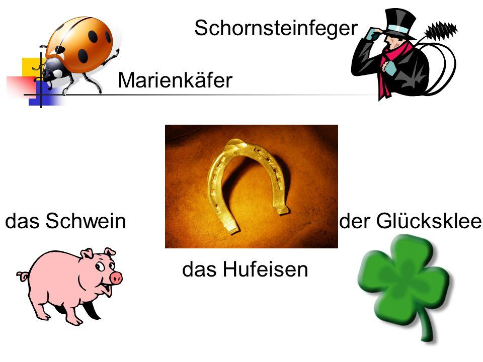 Marienkäfer Schornsteinfeger das Hufeisen der Glückskleedas Schwein