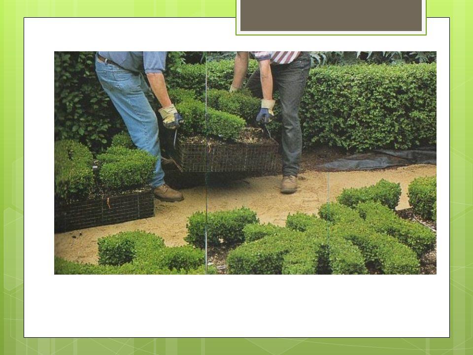 Was ist Gartenleasing. Mieten von Nutzungsteilen eines Gartens auf Zeit, ähnlich einem Autoleasing.