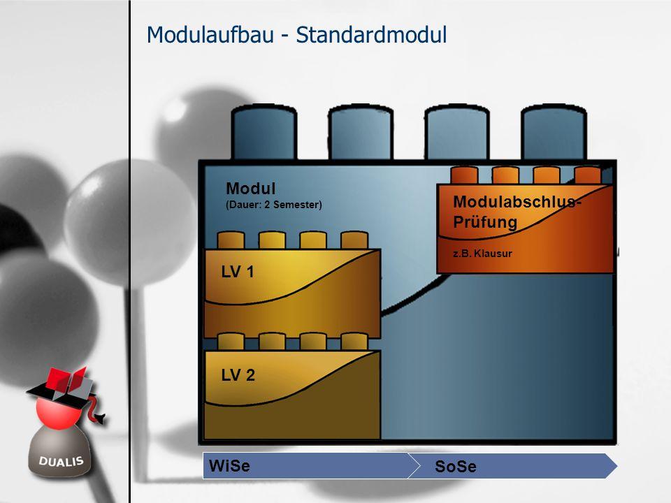 LV 1 LV 2 Modulabschlus- Prüfung z.B. Klausur Modul (Dauer: 2 Semester) Modulaufbau - Standardmodul WiSe SoSe