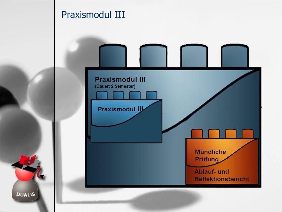 Praxismodul III (Dauer: 2 Semester) Praxismodul III Mündliche Prüfung Ablauf- und Reflektionsbericht