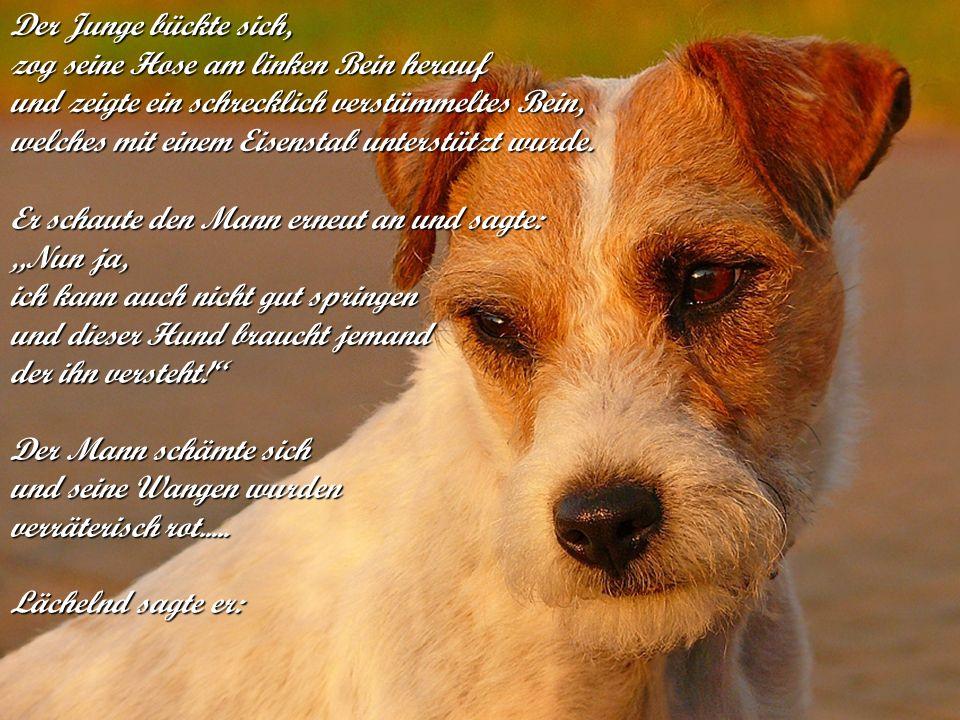 verteilt durch www.funmail2u.dewww.funmail2u.deMein Sohn, ich hoffe nur, dass die anderen vier Hunde auch einen Besitzer wie Dich finden.