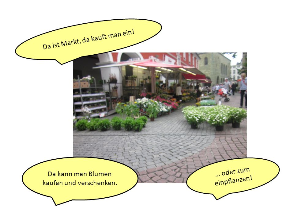 Da ist Markt, da kauft man ein! Da kann man Blumen kaufen und verschenken. … oder zum einpflanzen!