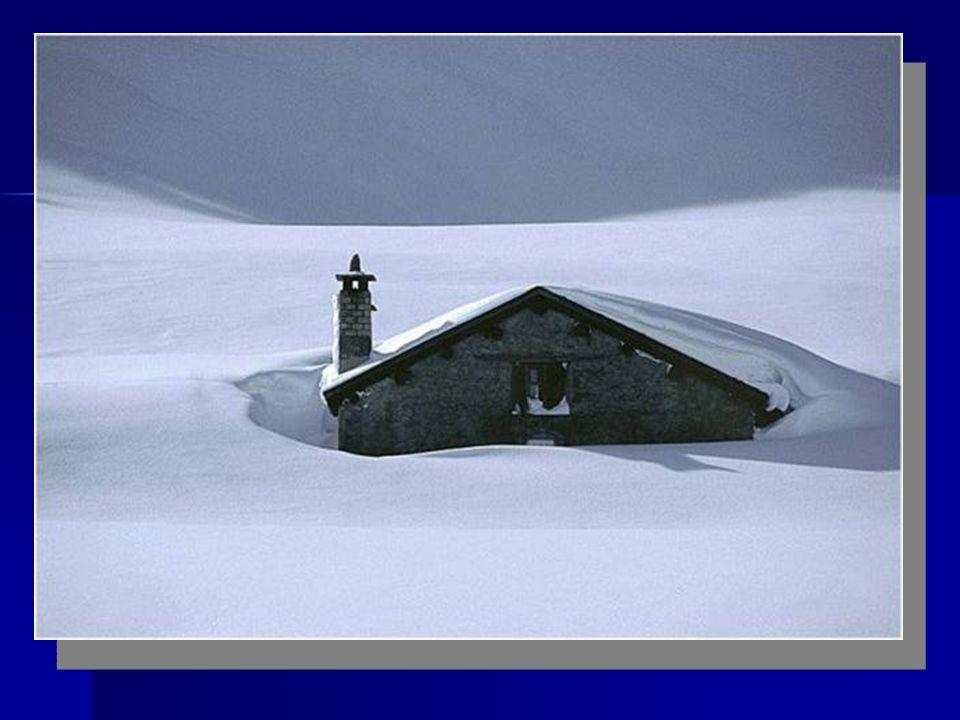 12. Dezember Die Sonne hat unseren ganzen schönen Schnee geschmolzen. Was für eine Enttäuschung. Mein Nachbar sagt, dass ich mir keine Sorgen machen s