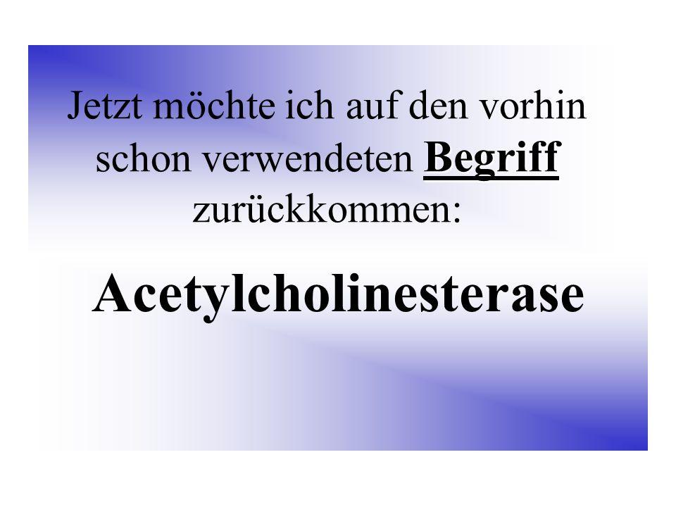Begriff Jetzt möchte ich auf den vorhin schon verwendeten Begriff zurückkommen: Acetylcholinesterase