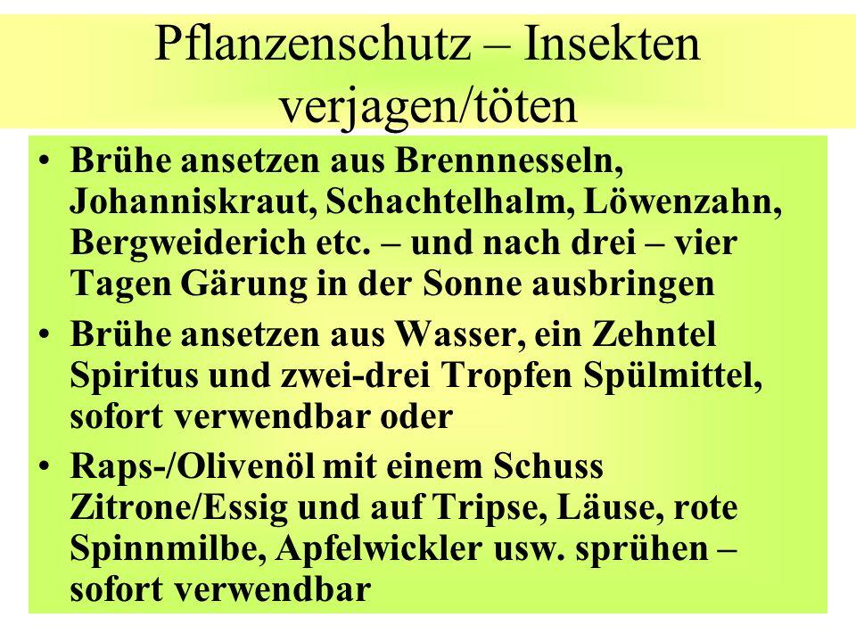 Pflanzenschutz – Insekten verjagen/töten Brühe ansetzen aus Brennnesseln, Johanniskraut, Schachtelhalm, Löwenzahn, Bergweiderich etc. – und nach drei