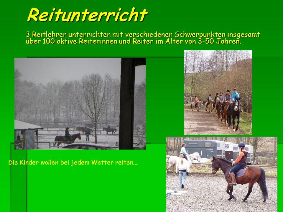 Reitunterricht 3 Reitlehrer unterrichten mit verschiedenen Schwerpunkten insgesamt über 100 aktive Reiterinnen und Reiter im Alter von 3-50 Jahren.