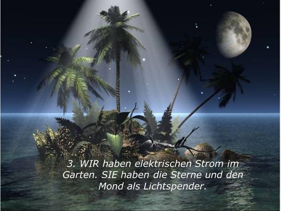 3. WIR haben elektrischen Strom im Garten. SIE haben die Sterne und den Mond als Lichtspender.