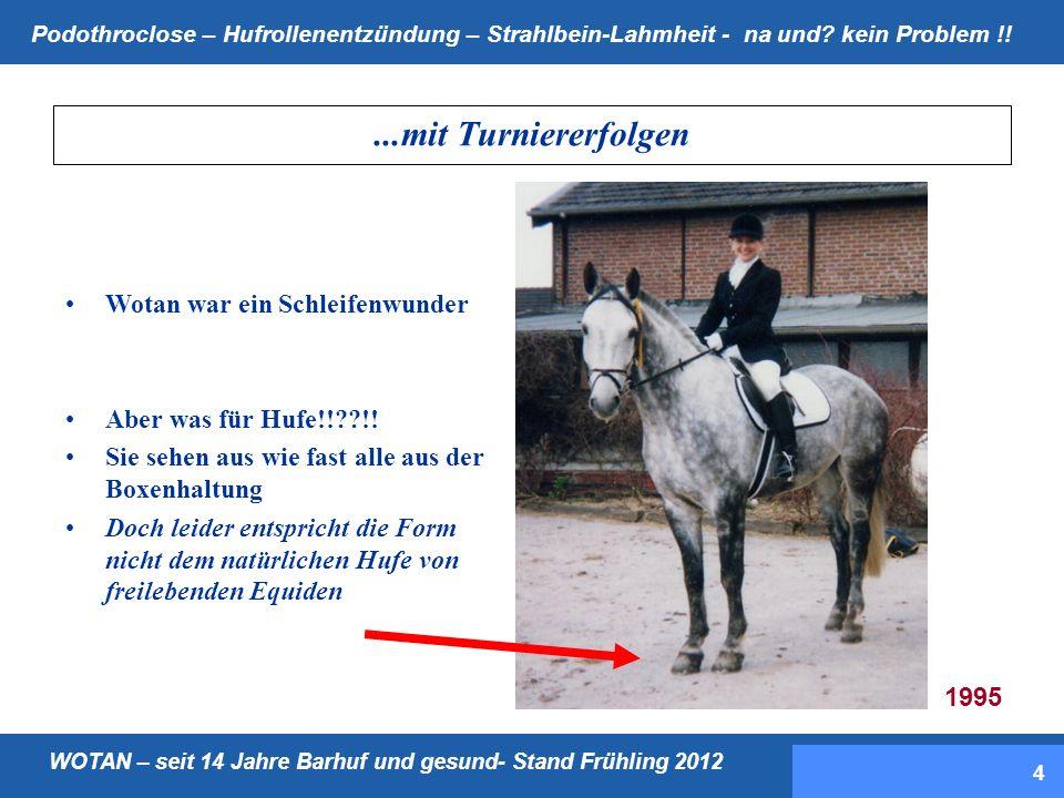 WOTAN – seit 14 Jahre Barhuf und gesund- Stand Frühling 2012 Podothroclose – Hufrollenentzündung – Strahlbein-Lahmheit - na und.