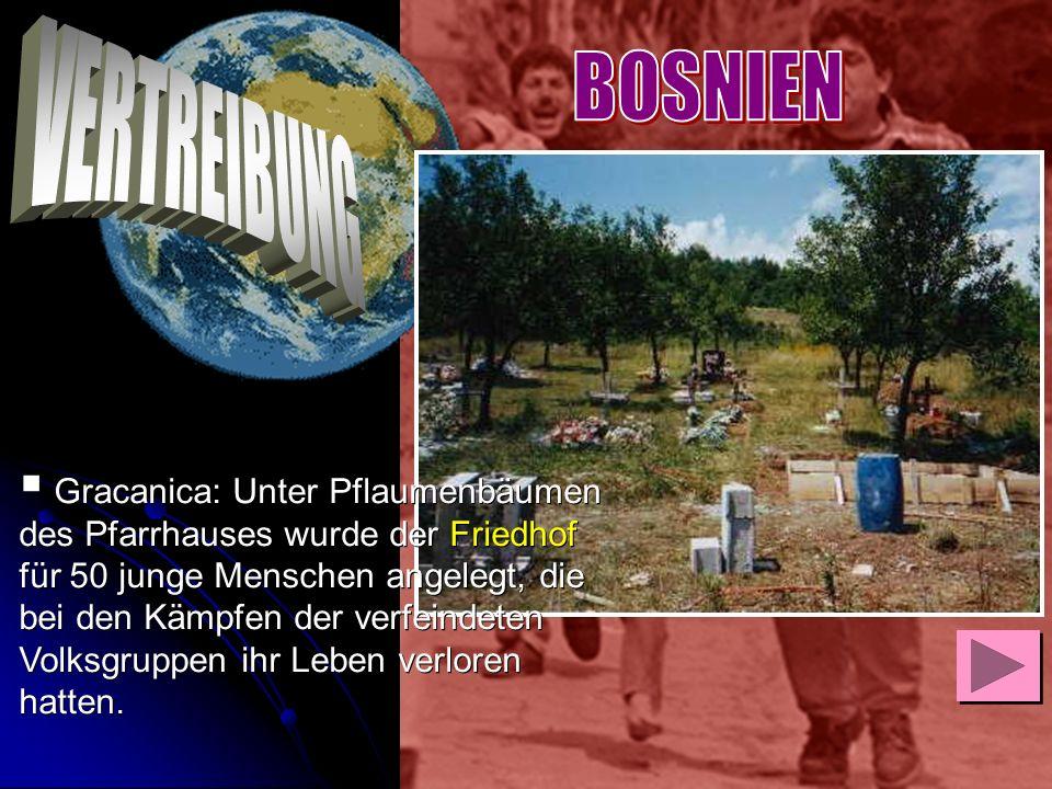 Gracanica: Unter Pflaumenbäumen des Pfarrhauses wurde der Friedhof für 50 junge Menschen angelegt, die bei den Kämpfen der verfeindeten Volksgruppen i