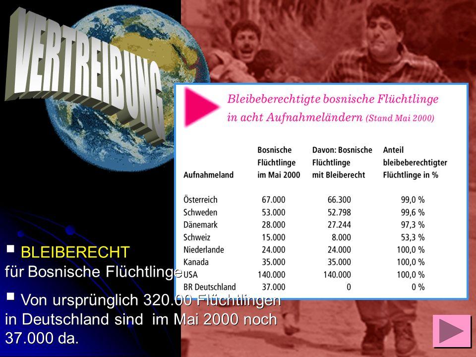 BLEIBERECHT für Bosnische Flüchtlinge Von ursprünglich 320.00 Flüchtlingen in Deutschland sind im Mai 2000 noch 37.000 da. Von ursprünglich 320.00 Flü