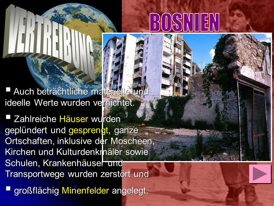Auch beträchtliche materielle und ideelle Werte wurden vernichtet. Zahlreiche Häuser wurden geplündert und gesprengt, ganze Ortschaften, inklusive der