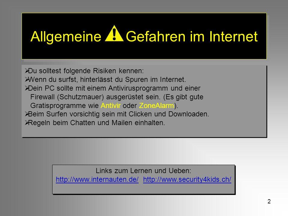 2 Allgemeine Gefahren im Internet Du solltest folgende Risiken kennen: Wenn du surfst, hinterlässt du Spuren im Internet. Dein PC sollte mit einem Ant
