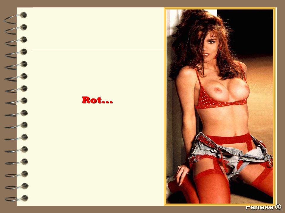 Peneke ® Rot...
