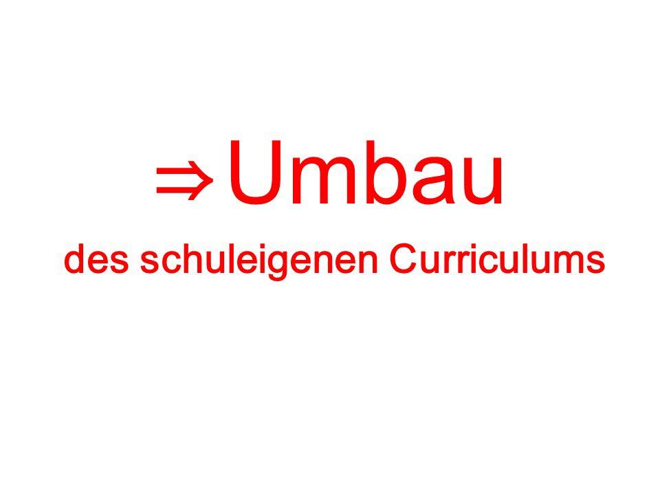 Umbau des schuleigenen Curriculums