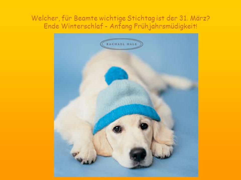 Welcher, für Beamte wichtige Stichtag ist der 31. März? Ende Winterschlaf - Anfang Frühjahrsmüdigkeit !