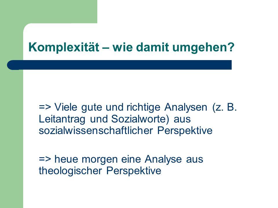 Komplexität – wie damit umgehen? => Viele gute und richtige Analysen (z. B. Leitantrag und Sozialworte) aus sozialwissenschaftlicher Perspektive => he