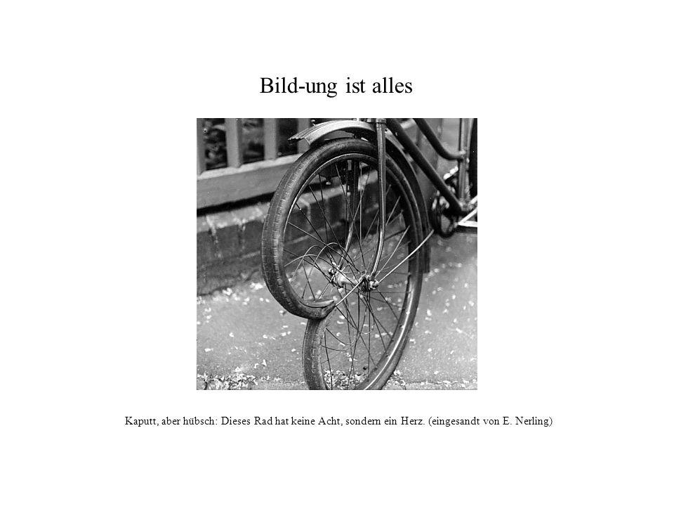 Bild-ung ist alles Kaputt, aber hübsch: Dieses Rad hat keine Acht, sondern ein Herz.