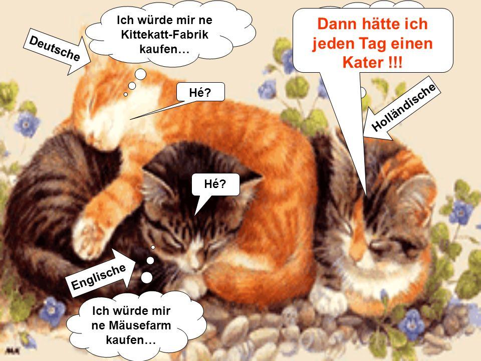 Englische Deutsche Holländische Ich würde mir ne Mäusefarm kaufen… Ich würde mir ne Kittekatt-Fabrik kaufen… Ich würde mir ne Bierbrauerei kaufen… Hé.