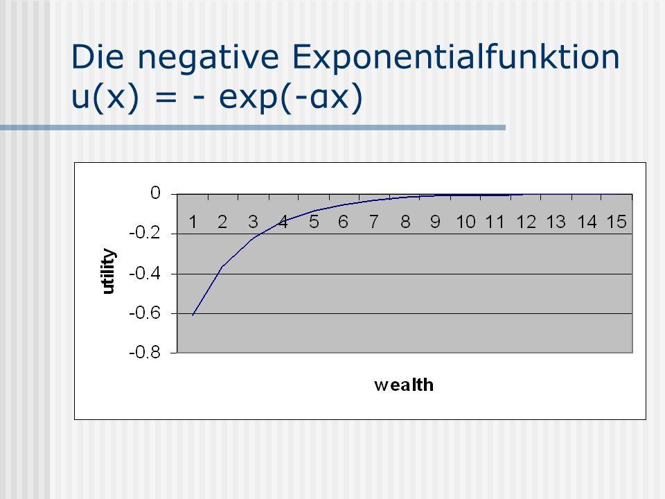 Die negative Exponentialfunktion u(x) = - exp(-αx)