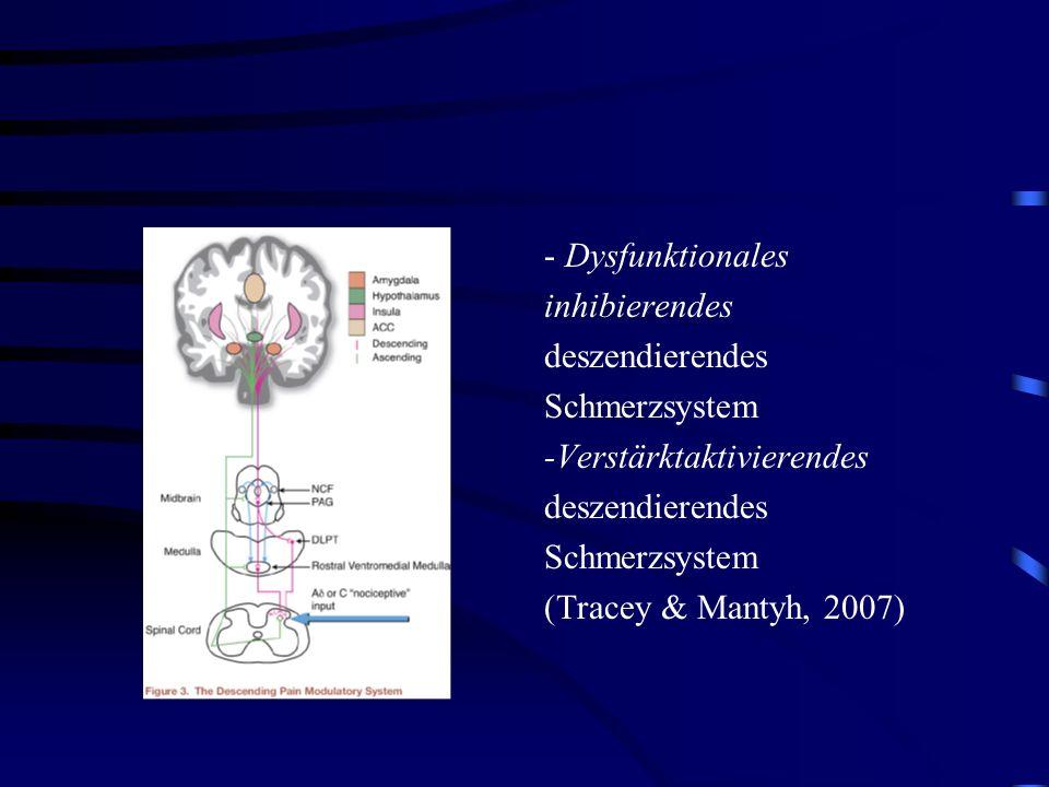 - Dysfunktionales inhibierendes deszendierendes Schmerzsystem -Verstärktaktivierendes deszendierendes Schmerzsystem (Tracey & Mantyh, 2007)